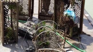 Sequestrato materiale abusivo per la pesca sportiva