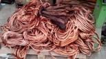 Predoni del rame nelle campagne di Candia lasciano al buio un'azienda agricola