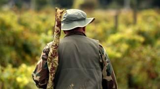 Serramazzoni, giovane colpito al collo da un proiettile vagante: salvo