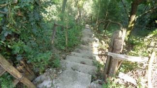 Precipita da una scalinata, rotola per metri e batte la testa: è grave