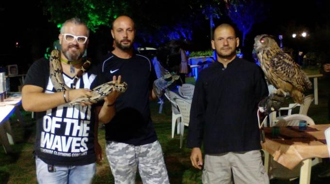 Serpenti ragni e gufi serata selvaggia a porto potenza - Tavolo matto porto potenza ...